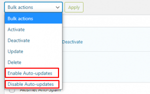 Enable Auto-update Plugins & Theme- Features of WordPress 5.5Enable Auto-update Plugins & Theme- Features of WordPress 5.5