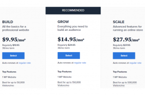 Managed WordPress Plans- Bluehost Review